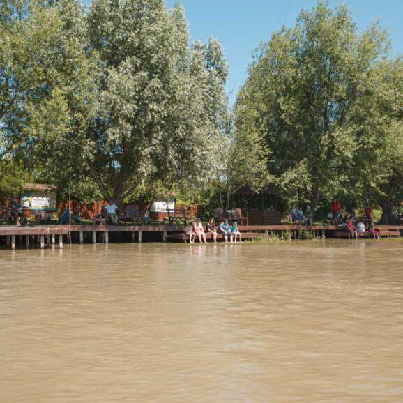 Організуємо кемпінг в сосновому бору на березі Дунаю